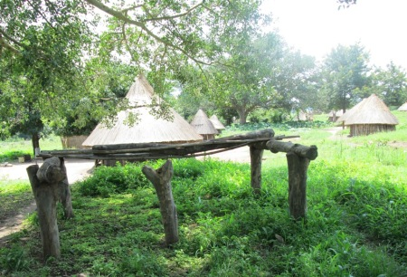 picture of the customary place where the council of adult men meet in South Sudan